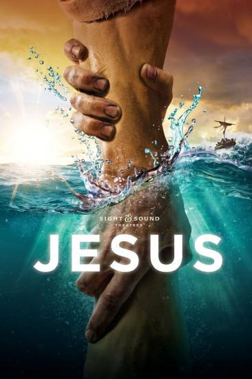 Jesus 2020 1080p WEB-DL H264 AC3-EVO