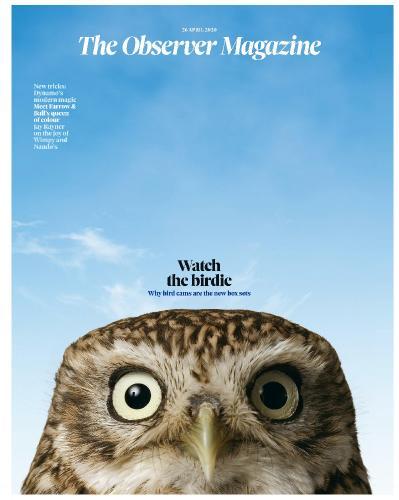 The Observer Magazine  26 April (2020)