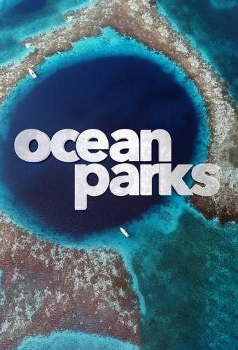 Ocean Parks S01E04 Mesoamerican Reef 720p WEB h264-CAFFEiNE