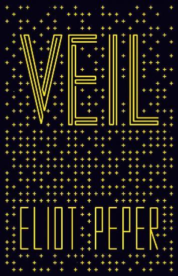 Veil by Eliot Peper