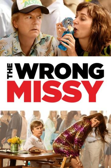 The Wrong Missy 2020 1080p NF WEB DDP5 1 x264-NTb