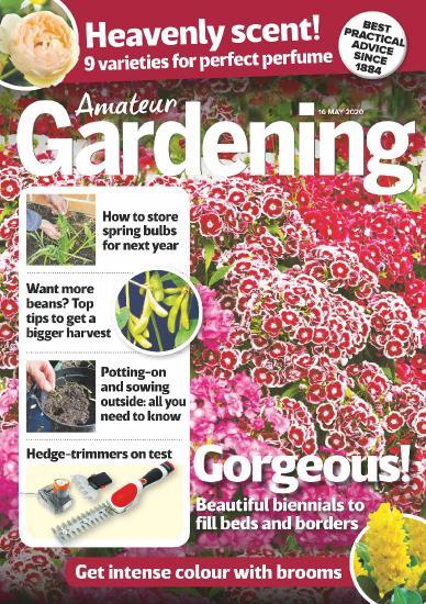 Amateur Gardening - 16 May 2020