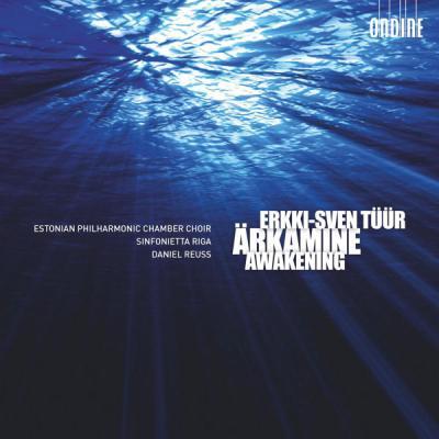 VA - Tüür  Ärkamine (Awakening) - (2011-11-01)