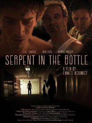 Serpent In The Bottle 2020 WEB-DL x264-FGT