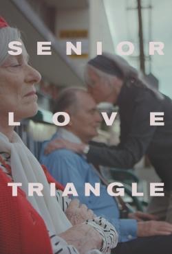 Senior Love Triangle 2019 1080p WEBRip X264 DD 5 1-EVO