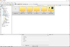XnViewMP 0.99.0 (2021) PC