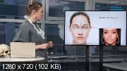 Анатомия лица для ретушеров