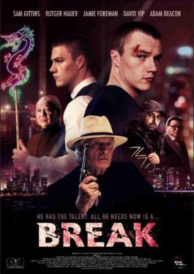 Break 2020 WEB-DL x264-FGT
