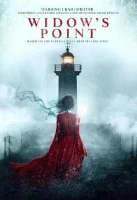 Widows Point 2019 WEB-DL XviD MP3-FGT