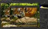 SILKYPIX Developer Studio Pro 10.0.14.0 + Rus