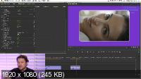 Дмитрий Ларионов - Эффекты и анимация в Premiere Pro (2020/PCRec/Rus)